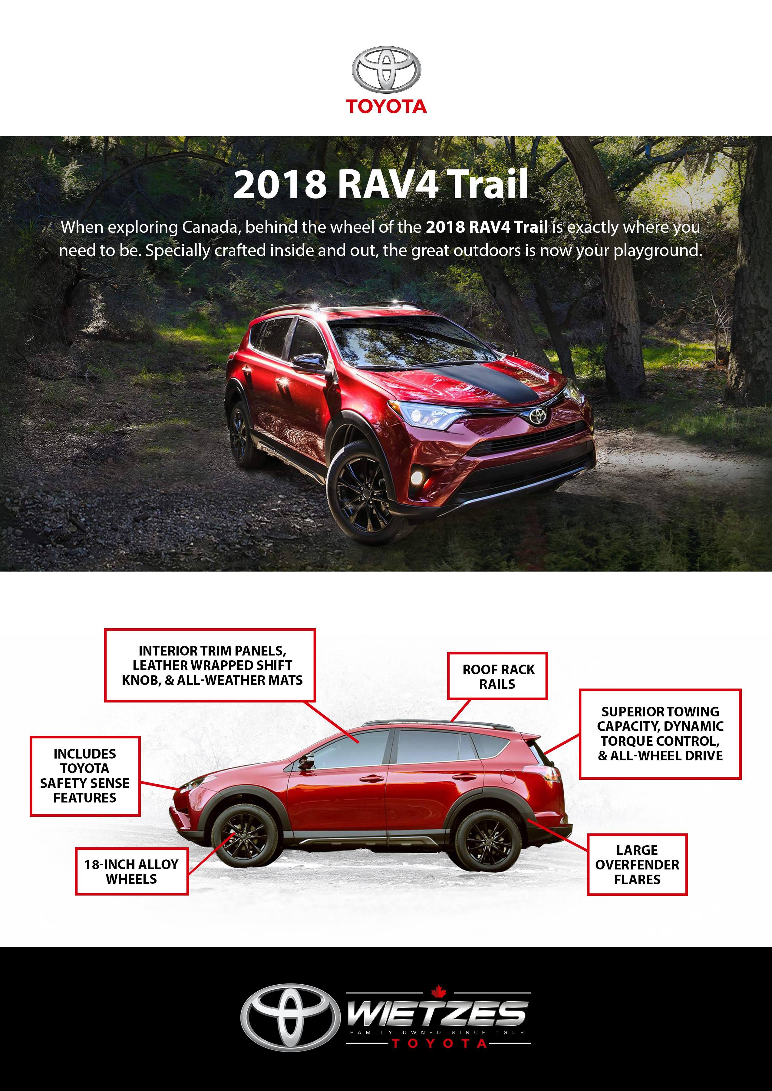 WietzesToyota-Rav4Trail-Poster